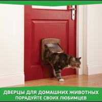 Дверцы для домашних животных. Порадуйте своих любимцев